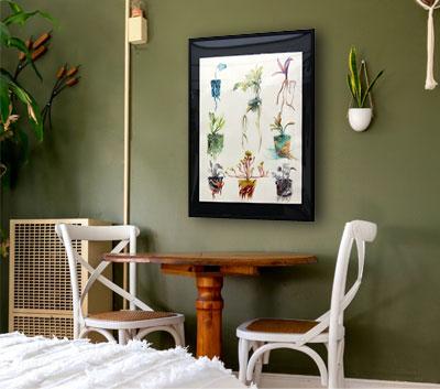Planche botanique aquarelle 30€.